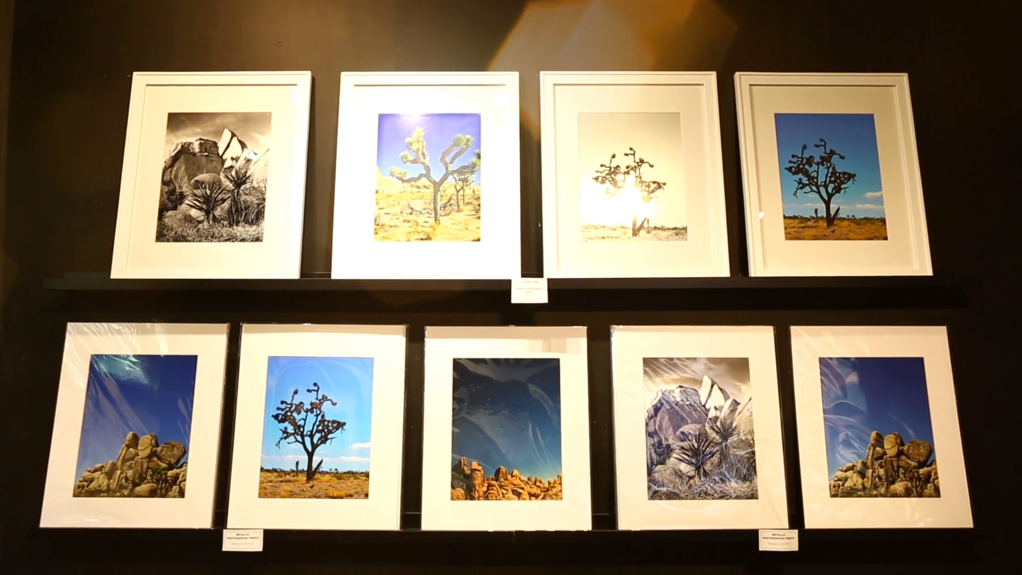 joshua tree prints display